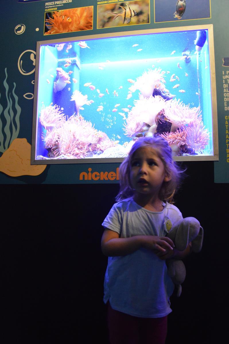 Alla scoperta del mare con Spongebob!