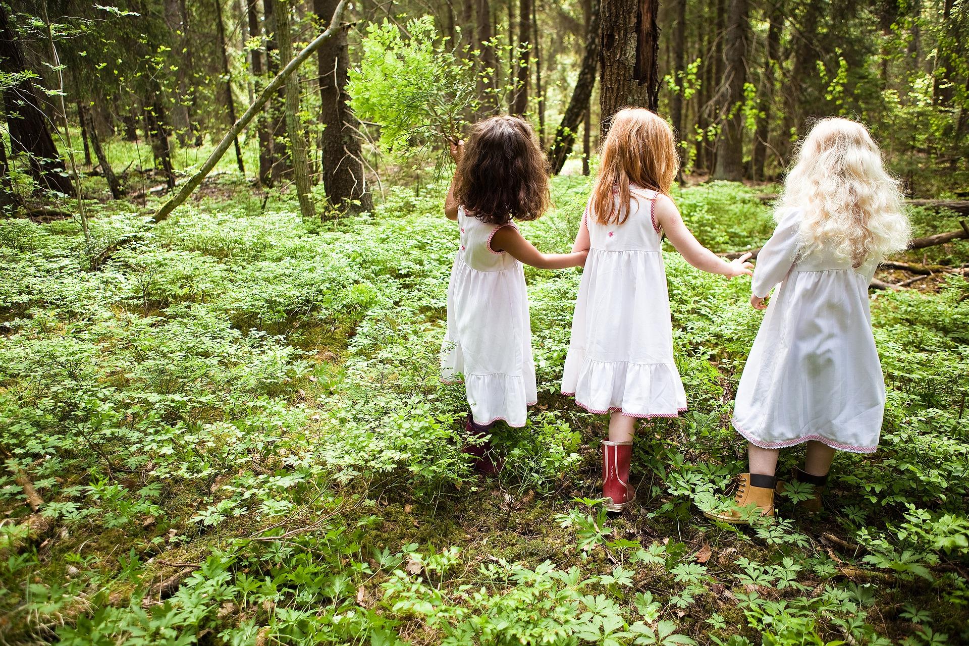 scuola nel bosco italia